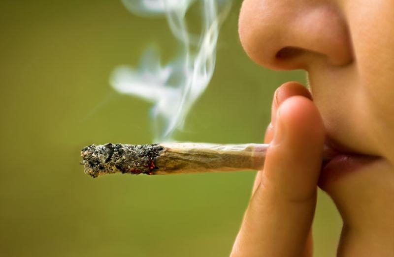 Cannabis og hamp som rusmiddel